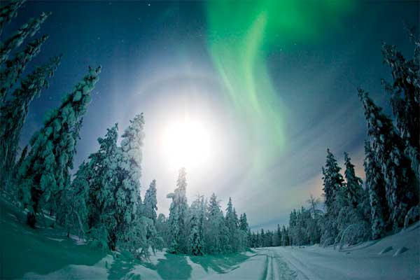Lapland: All-action adventure in the snow