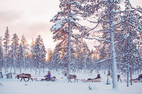 Family holidays to Lapland to see Santa