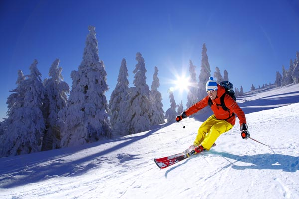 Erna Low Travel taken over by student ski specialist