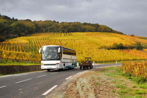 Mystery shopper: Tunbridge Wells, a European coach tour