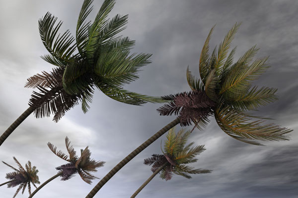 Caribbean islands placed on hurricane alert
