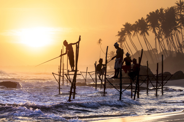 Sri Lanka operators cut prices to drive bookings