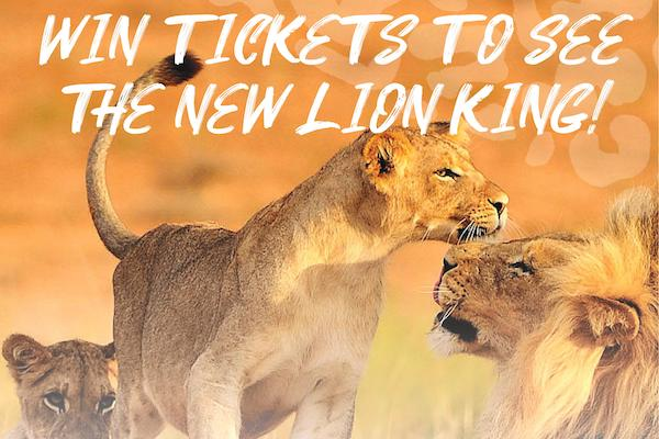Shearings' Lion King incentive offers cinema vouchers