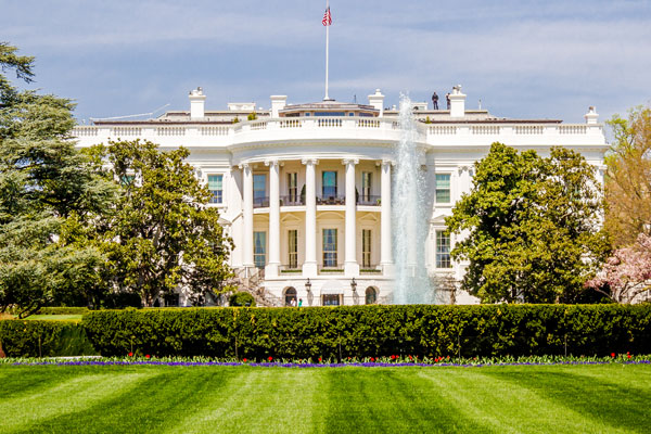 White House hosts call with cruise line bosses to discuss Healthy Sail Panel proposals
