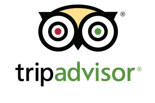 TripAdvisor 'flooded with fake positive reviews'