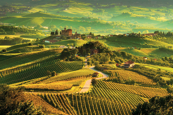 Eight of the best wine holidays around the world