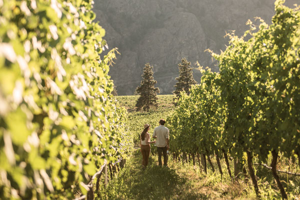 Wining and dining in British Columbia's Okanagan Valley