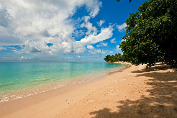 Win a bottle of Barbados rum punch and boost your winter sun sales