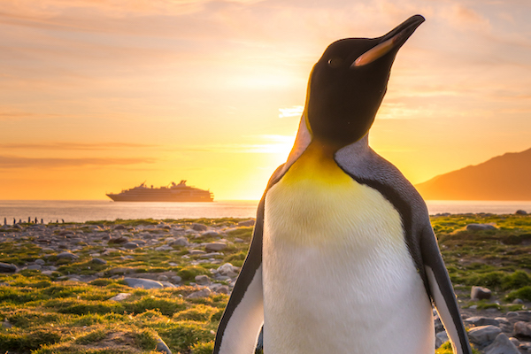 Clia unveils first new-to-expedition cruise guide for agents