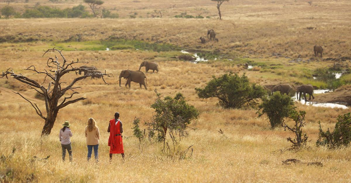 A Kenya safari without the crowds